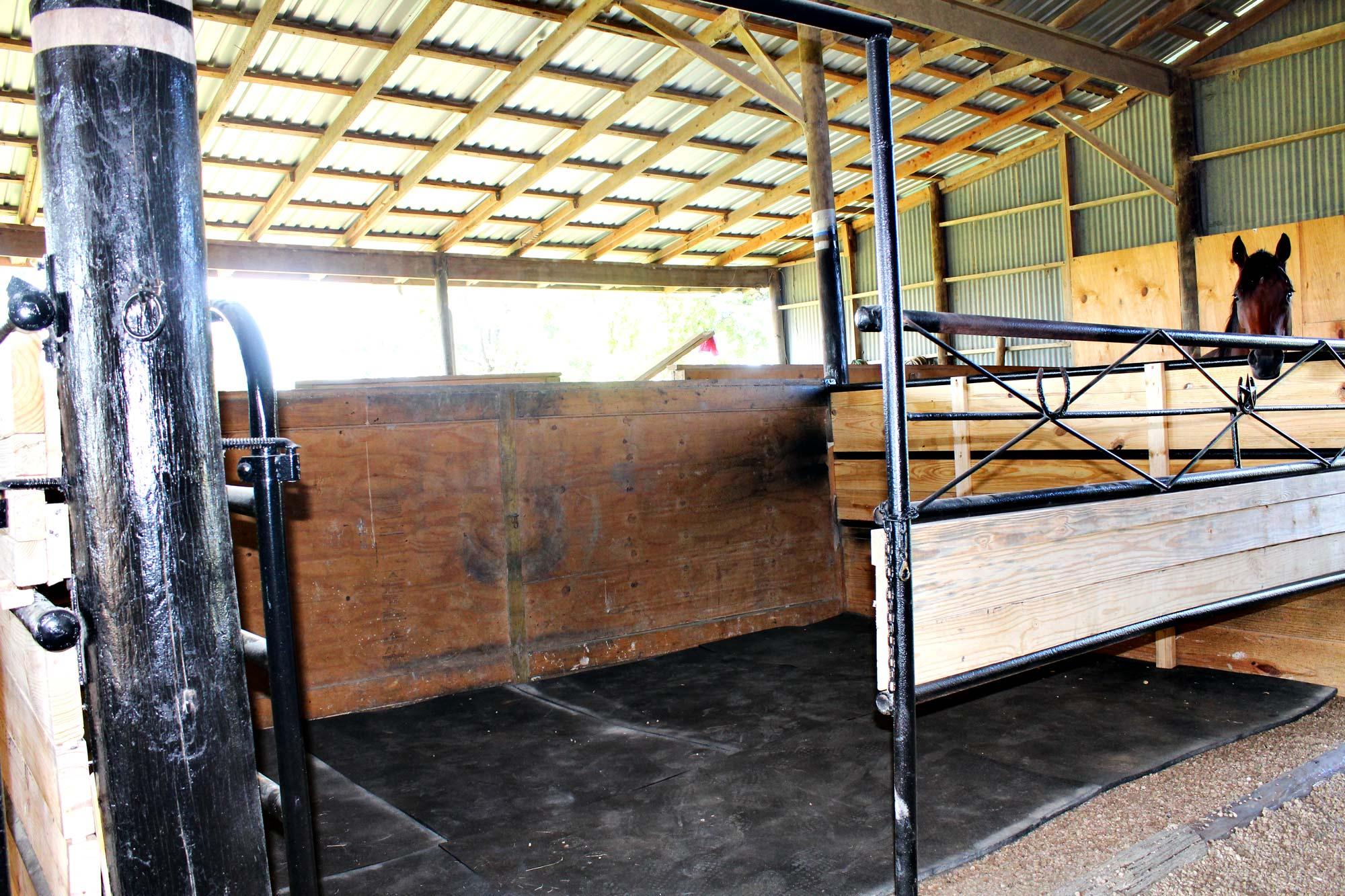 Large 12X16 Stalls